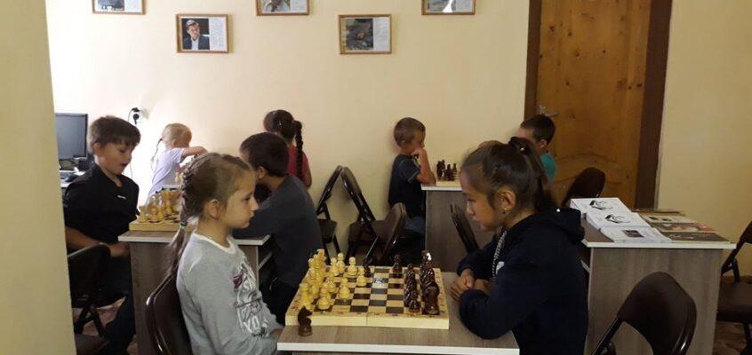 Помощь шахматному кружку